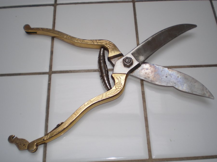 What's 'J.S Hollar Co. kitchen shears' Worth? Picture