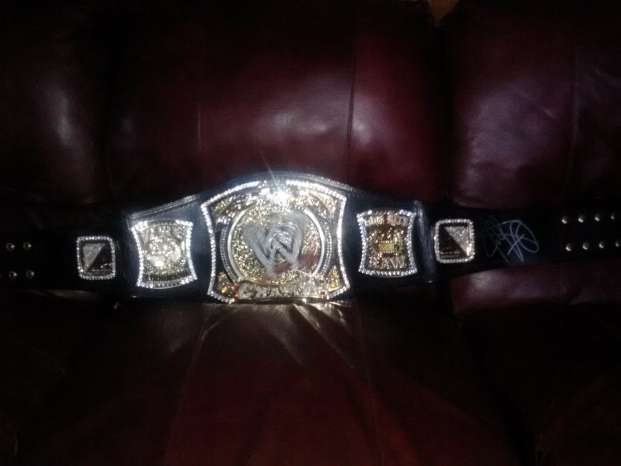 What's a WWE championship belt signed by john cena Worth? Picture