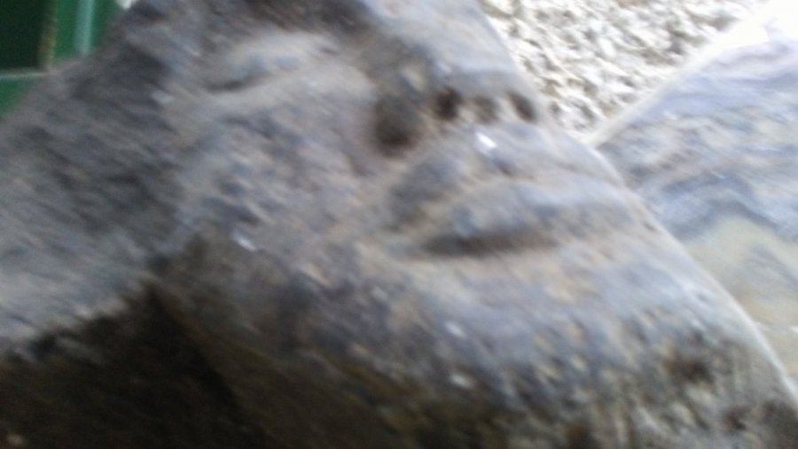 artifacts stone head Picture